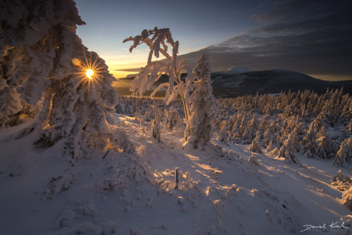 Grzbiet Lasocki zima 3