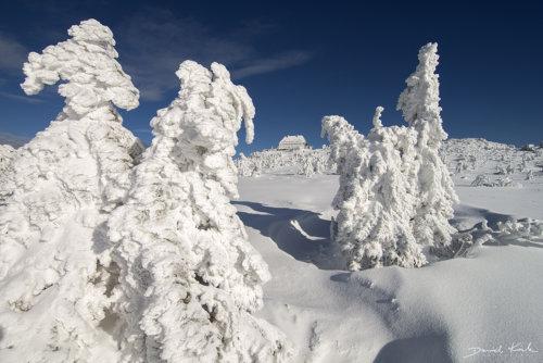 Szrenica zima 3