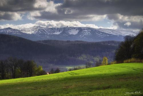 Wiosna, łąki w Karkonoszach