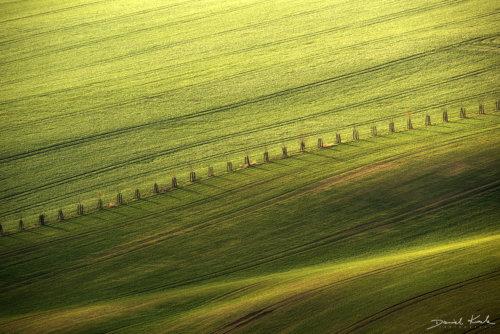 Morawy pola 17