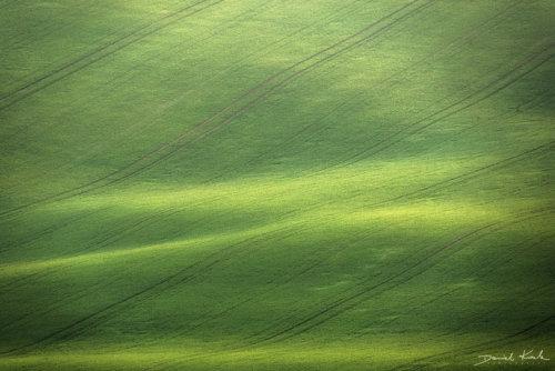 Morawy pola 9